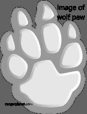 wolf-paw-image